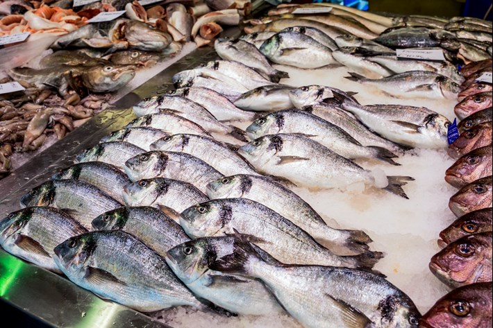 A counter with fresh fish dorado,carrelet at the local fish market
